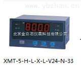 金立石XMZ-1-H-L-N-X-N-N-21