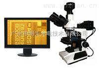 四川金相数码显微镜价格,四川数码金相显微镜、金相显微镜ME31