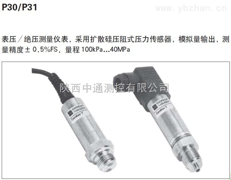 P30,P31,P40,P41,E+H压力变送器