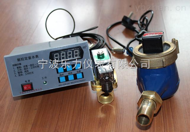 LXSD-15S-200S数控定量水表