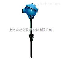 耐磨热电偶WRNN2-430