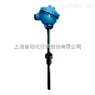 耐磨热电偶WREN2-530
