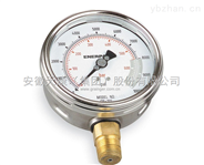 WT-YTS 耐酸壓力表