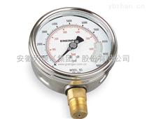WT-YTS 耐酸压力表