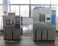 TS-1000实惠的步入式高低温交变湿热箱
