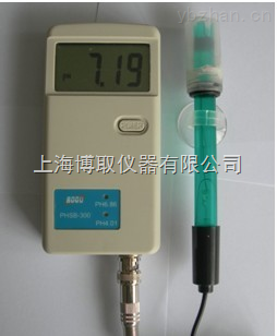PHSB-300-PHSB-300型便携式酸度计,手持式PH计厂家