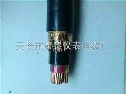 BPYJVTP2-0.6/1KV-3*150+1*70变频电缆
