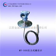 压力式液位计结构 压力式液位计规格
