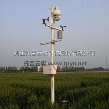 作物高效育种有赖于农业物联网技术的应用