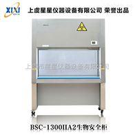 BSC-1300IIA2實驗室生物安全柜作用 產品型號