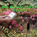 土壤水分仪/土壤湿度仪型号:M393828