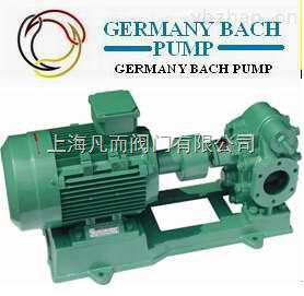 BACH-S-进口大流量齿轮泵德国大流量齿轮泵
