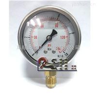 YN60耐震 徑向壓力表