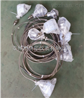 双支铠装热电偶K热电偶厂家WRNK2-236