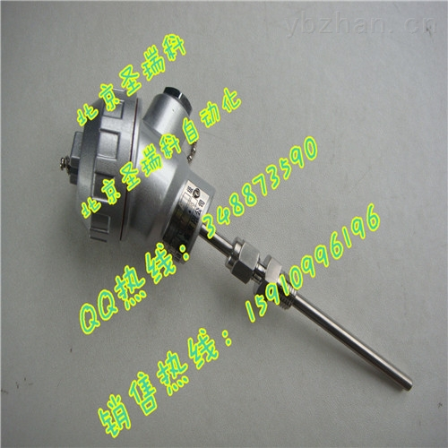 北京K型热电偶厂家WRNK-238