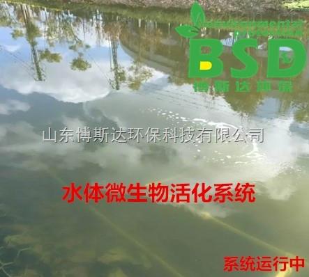 博斯达河道黑臭水体净化系统价格优惠
