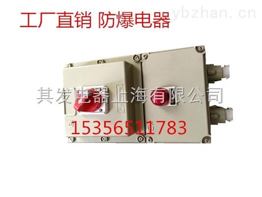 BDZ52防爆断路器16-63A 2P/3P断路器箱 防爆空气开关 防爆配电箱