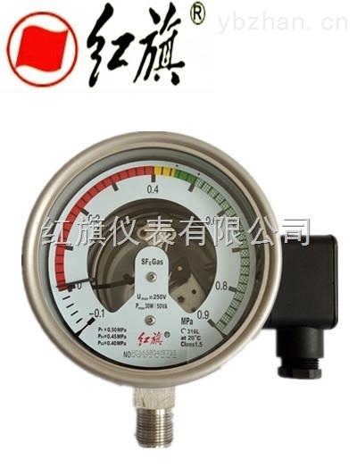 YSF-100Ⅱ 型气体密度继电器