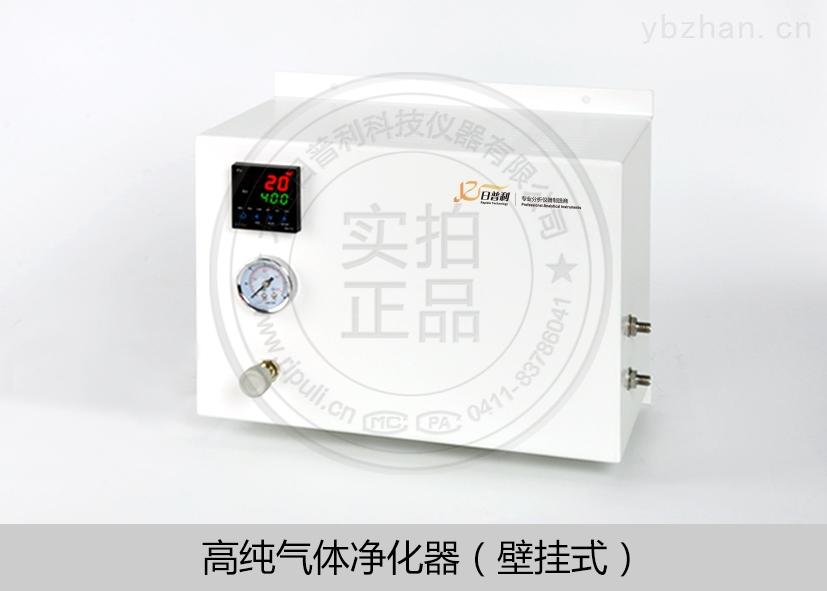 壁掛式高純氣體凈化器RPL-Y2000