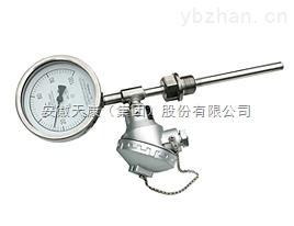 安徽天康WSSE-501带热电偶一体化双金属温度计