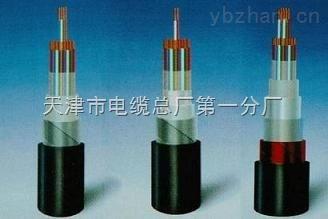 铁路信号电缆 PTYA23  PTYV22