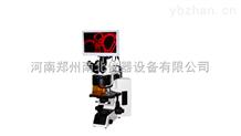 五波段LED熒光顯微鏡
