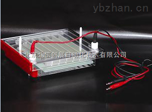 DL19- DYCP-44P-快速凝胶电泳仪