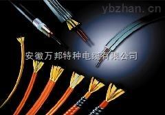 氟塑料绝缘氟塑料护套控制电缆