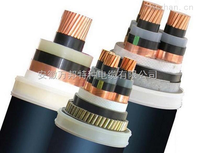 FS-MGYJV防水防鼠电力电缆