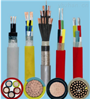 供应RTPEF耐低温柔性电缆