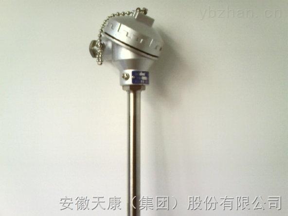WRNK2-231-双支铠装熱電偶WRNK2-231