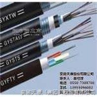GYFTY-16b1GYFTY-16b1光缆