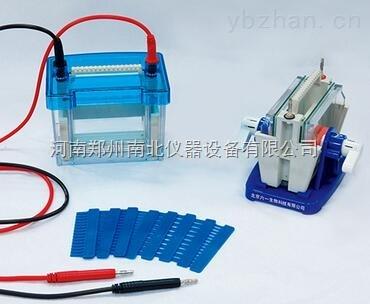 小型单垂直电泳仪,单垂直电泳仪批发