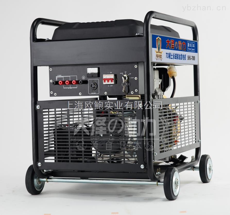 大泽6kw稀土永磁三相柴油发电机