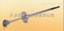 WRN-230NM耐磨热电偶
