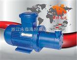磁力泵新價格 磁力驅動旋渦泵CWB型