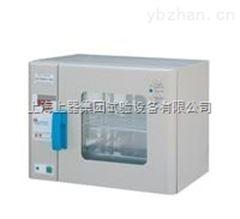 上海電熱鼓風幹燥箱--廠家設備