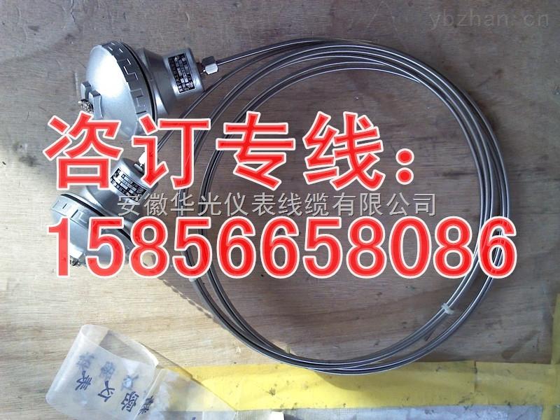 WRNK-131_WRNK-121絕緣鎧裝熱電偶廠家