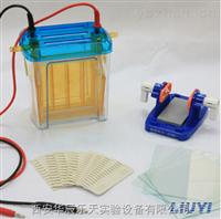 DYCZ-24EN型双垂直电泳仪(中号)
