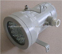BDS51 BDS-100瓦装白炽灯的防爆视孔灯
