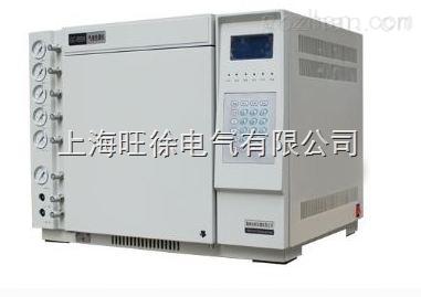 TH-2020气相色谱仪专业