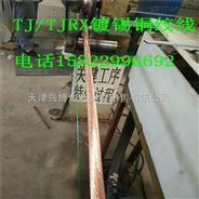 金华镀锡铜绞线/风电接地120平方线