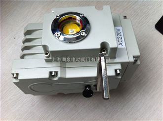 220V精小型电动执行器