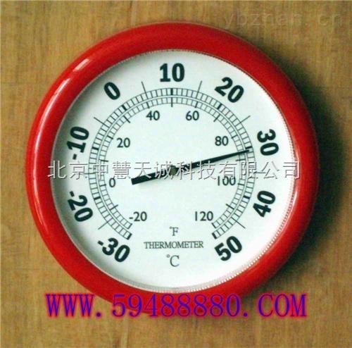 塑料温度计250MM  型号:DJQ-T9250P