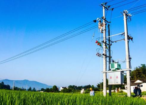 投资3.37亿 安徽合肥启动2017年农网改造工作