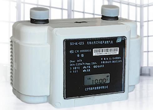 GB/T6968《膜式燃气表》和《超声燃气表》国标研讨会召开