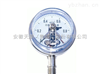 YXC-100BF 不锈钢耐腐蚀电接点压力表