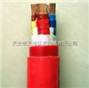 AGR硅橡胶电缆